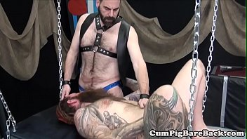 Bear, Leather, Kink, Bear gay, Bears, Dungeon